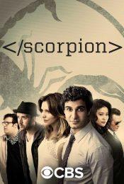 Scorpion Season 1 ไขคดีทีมอัจฉริยะ ปี 1